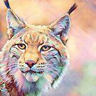 Colorful Bobcat by TerryIKON