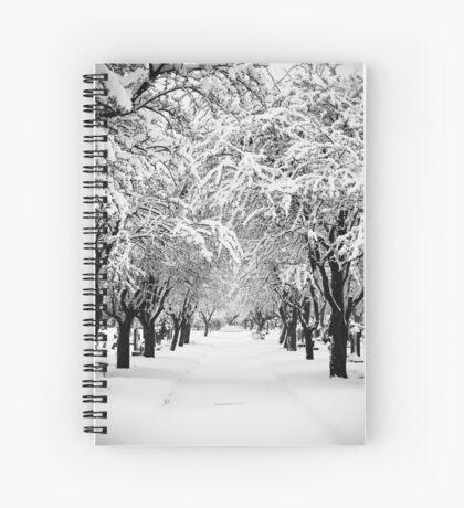 Deep Snow Spiral Notebook