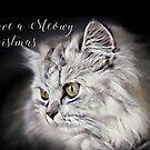 Meowy Christmas by TerryIKON