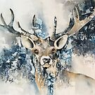 Stag by Bev  Wells