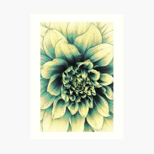 La Dahlia Blue Art Print