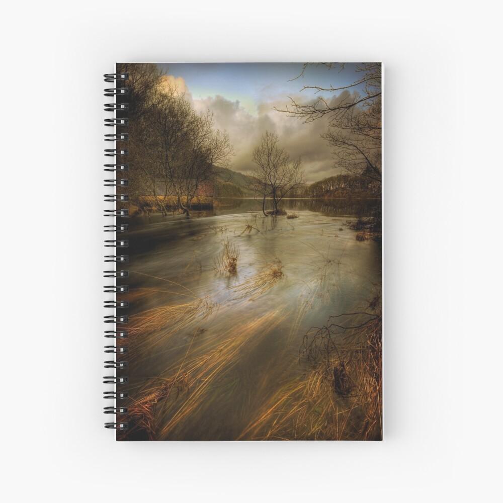 Chon Flow Spiral Notebook