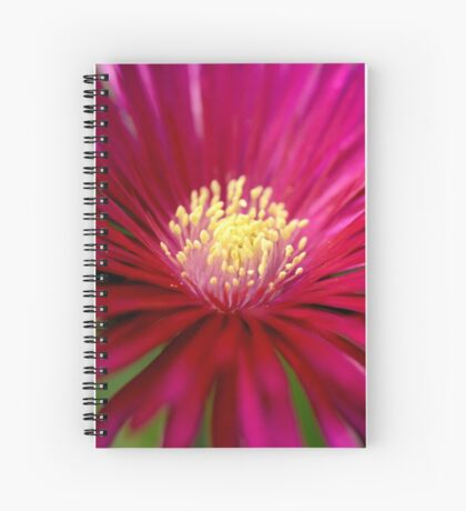 Into the Heat.... Spiral Notebook