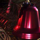 Red Bell by Steve plowman