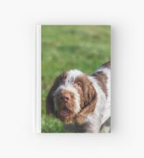 Italian Spinone Puppy Portrait Hardcover Journal