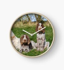Italian Spinoni Orange and White Adult with Brown Roan Puppies Portrait Clock