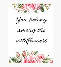 You belong among the wildflowers, Quotes, gayfeather, goldfields, red maids, wolly daisy, balloon flower, rose,  shepherd's clock, butterweed, bluebell, mountain pride,  sticky aster, blazing star Photographic Print