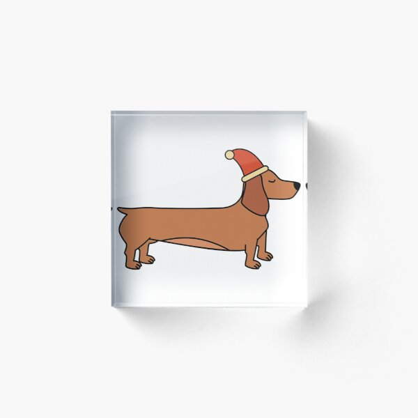 Wiener dachshund dog silently waiting for Christmas time Acrylic Block