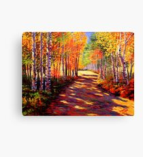 Aspen Light on the Road Canvas Print
