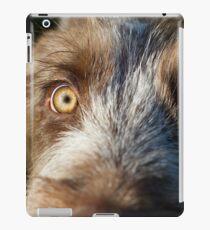Brown Roan Italian Spinone Puppy Dog Head Shot iPad Case/Skin