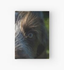 Brown Roan Italian Spinone Puppy Dog Head Shot Hardcover Journal