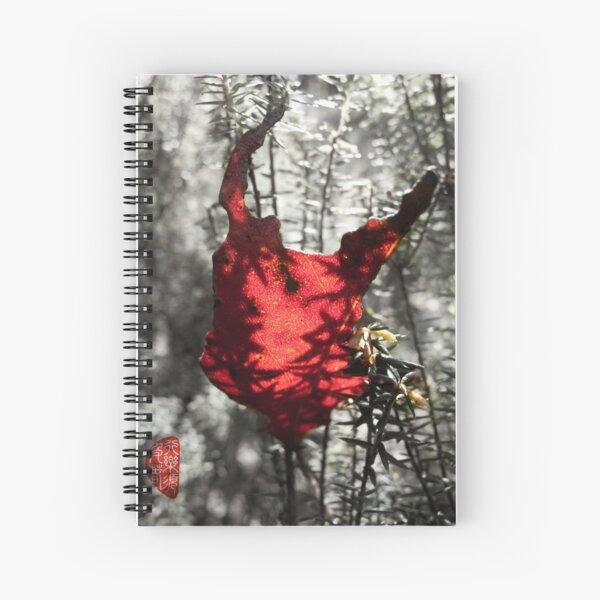 Chewed Spiral Notebook
