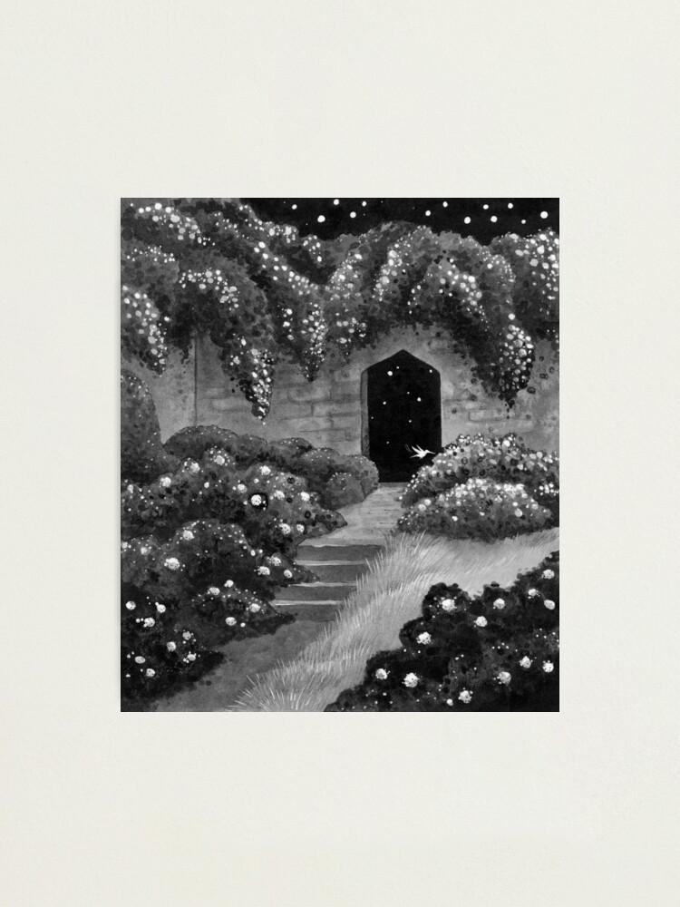 Alternate view of Midnight Garden Photographic Print