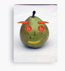 Fruit!!!  Canvas Print