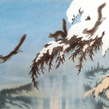Flying Squirrel Ekorn i Flukt  by dianegaddis