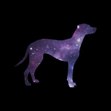 galaxy mutt by jualcantara