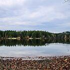 Elk/Beaver lake by Perggals© - Stacey Turner