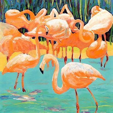 Flamingo's by RD Riccoboni by RDRiccoboni
