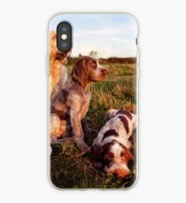 Italian Spinone Orange and White Adult with Brown Roan Puppies Portrait iPhone Case
