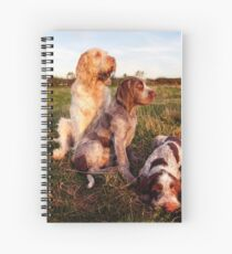 Italian Spinone Orange and White Adult with Brown Roan Puppies Portrait Spiral Notebook