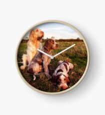 Italian Spinone Orange and White Adult with Brown Roan Puppies Portrait Clock