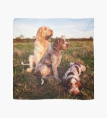 Italian Spinone Orange and White Adult with Brown Roan Puppies Portrait Scarf
