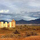 Remnants - Flinders Ranges by Marion  Cullen