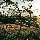 Old Plough by Eve Parry