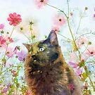 Black Fluffy Kitten in the Sunshine Garden by XCelesteX