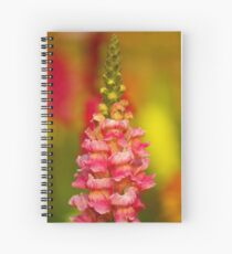 Colors of Joy Spiral Notebook