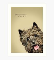 Curious and Cute Cairn Terrier Art Print
