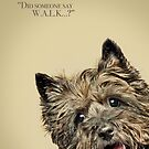 Cairn Terrier by GDayAnimalArt