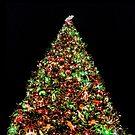 Christmas Tree 1 by Joe Lach