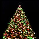 Christmas Tree 1 by Joe Lach