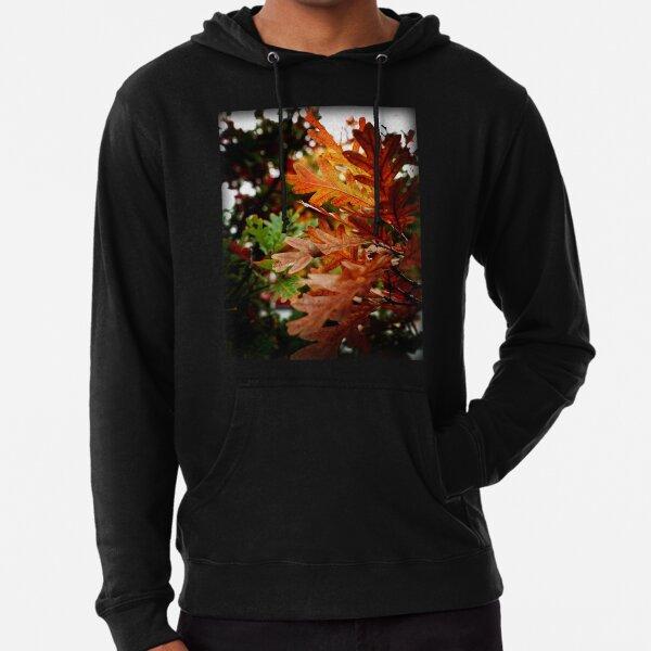 Oak Leaves In Autumn Lightweight Hoodie
