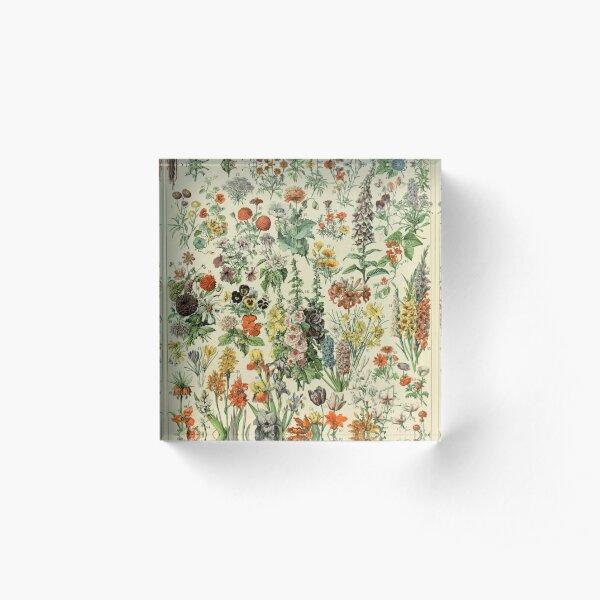 Adolphe Millot Fleurs A Acrylic Block
