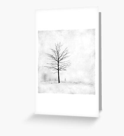 Snow Tree Greeting Card