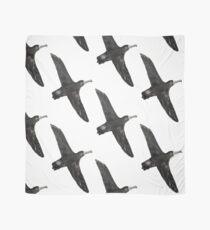 Black-Footed Albatross Scarf