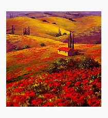 Tuscany Poppy Hills Photographic Print