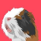 Puff the Guinea Pig by Alittlebitiffy