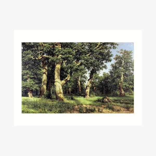 Дубы (Oak Grove) - Ivan Shishkin Art Print