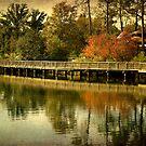 Harbor Park by Jonicool