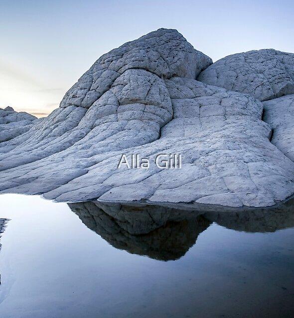 Brain Rock by Alla Gill