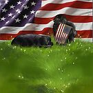 2 newfies and the American Flag by Patricia Reeder Eubank