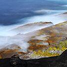 Wild Coast ... by Angelika  Vogel
