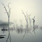 0828 Morning fog - Lake Mulwala by Hans Kawitzki