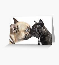 A Kiss From Auntie Greeting Card
