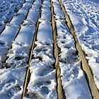 Trampled Snow Steps by Cora Wandel