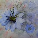 Love-in-the-mist ( The painting ) by katymckay