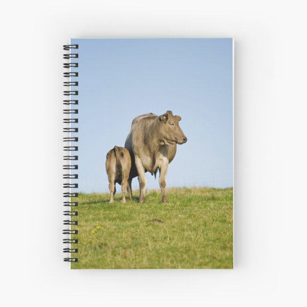 Grey cow and calf - St Bees Spiral Notebook
